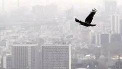 شاخص آلودگی هوا تهران هم اکنون
