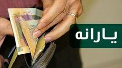 افزایش یارانه ها از آذرماه/دولت رئیسی چقدر یارانه می دهد؟
