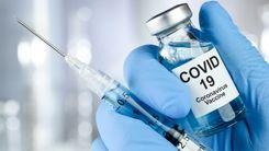 چه افرادی باید واکسن کرونا بزنند؟