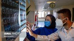 آخرین آمار کرونا در ایران /فوت ۲۱۶ بیمار کرونایی دیگر