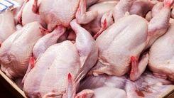 آخرین قیمت مرغ در بازار اعلام شد