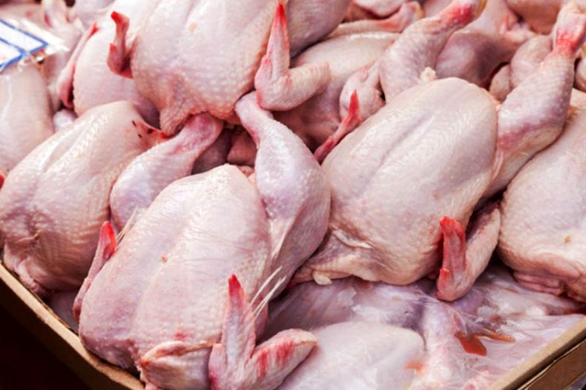 آخرین قیمت مرغ امروز / گفته های جدید از تنظیم قیمت مرغ